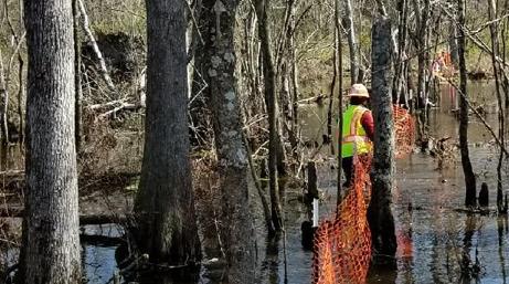 Stream/Wetlands Mitigation